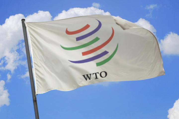 США подали иск на Россию в ВТО из-за повышенных пошлин на сталь и алюминий